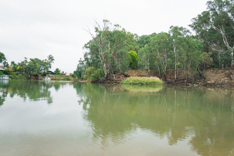 Deni Edward River